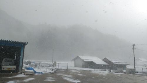 大雪に見舞われた年末年始でした。_c0300035_16470649.jpg
