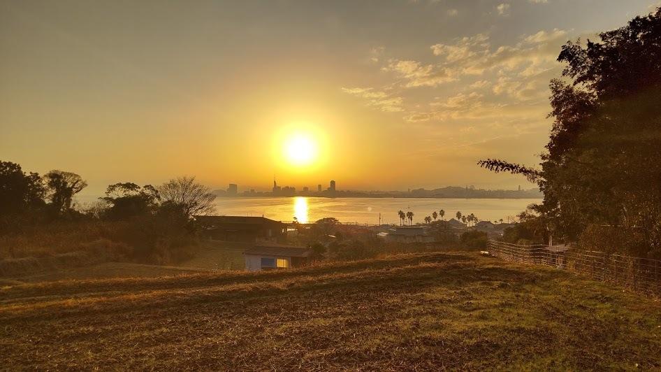 2021/1/14 今日の島暮らし/我が家の朝_f0201157_16373862.jpg