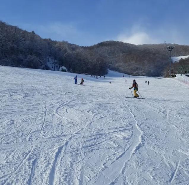 冬のアクティビティで一緒に遊びましょう!_d0197762_16105819.jpg