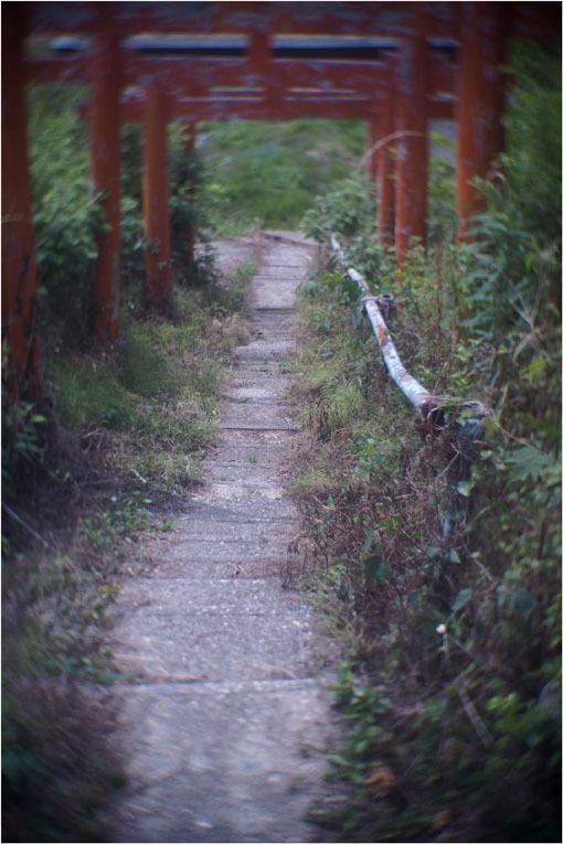 876 ローカルライン(2020年6月5日ダルメーヤー25mmf1.9奈良山村町帯解の地蔵巡り)超古代文明_c0168172_22180849.jpg