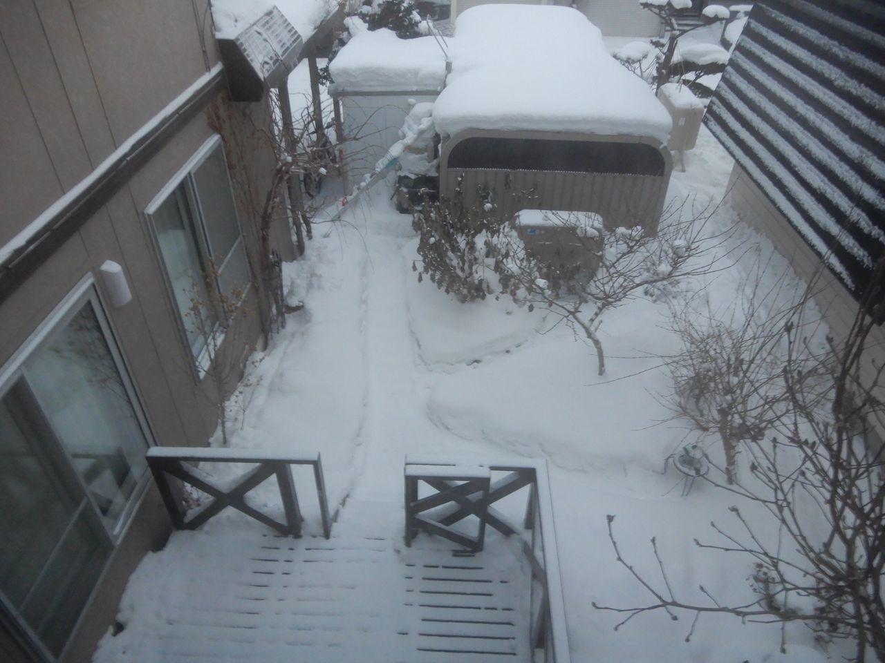 真冬日に戻りました_c0025115_21462914.jpg