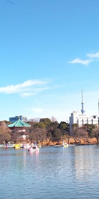 1月16日 「薮入り」の日・若冲と売茶翁について_b0255824_17142657.jpg