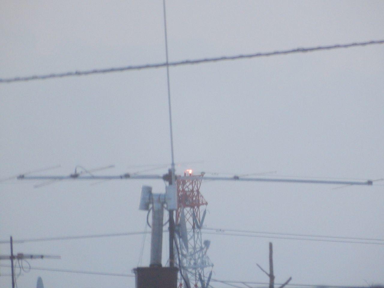 真冬日から一転、今年最高の暖かさ_c0025115_22032318.jpg