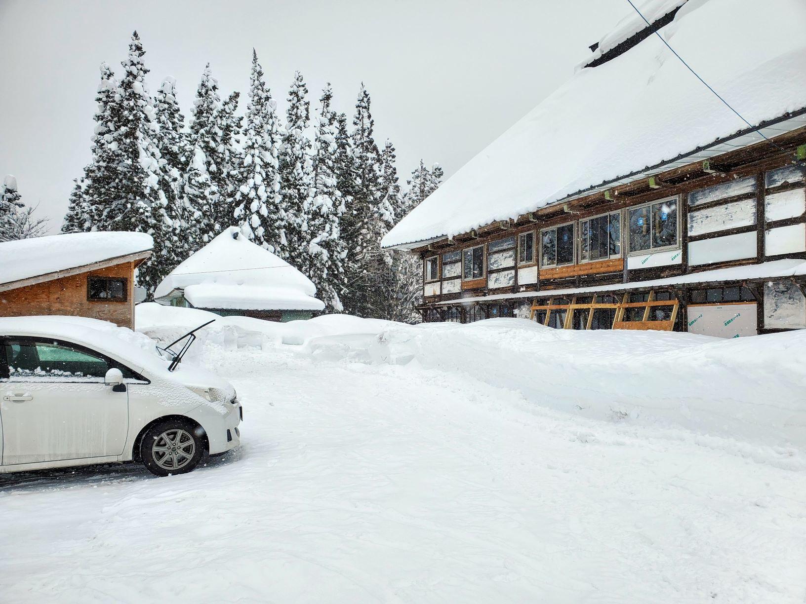 大雪の受け止め方_b0304722_15232264.jpg