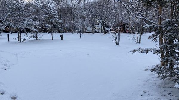 風、雨、みぞれ、のち雪*_b0174425_23472832.jpg