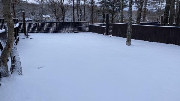 風、雨、みぞれ、のち雪*_b0174425_23474240.jpg