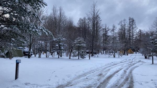 風、雨、みぞれ、のち雪*_b0174425_23475225.jpg