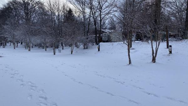 風、雨、みぞれ、のち雪*_b0174425_23475594.jpg