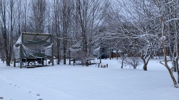 風、雨、みぞれ、のち雪*_b0174425_23475975.jpg