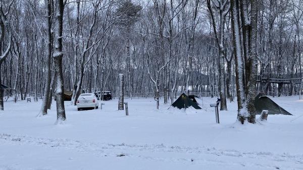 風、雨、みぞれ、のち雪*_b0174425_23481181.jpg