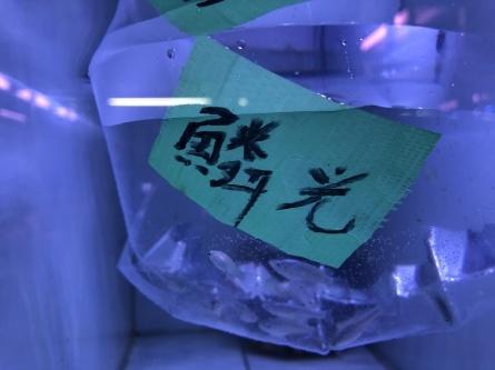 1/16 店長日記_e0173381_18405711.jpg