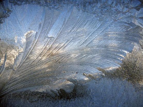 冬の造形_d0366590_11022204.jpg