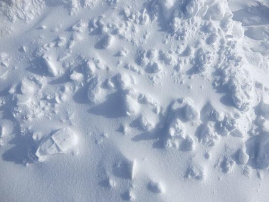 冬の造形_d0366590_11090604.jpg