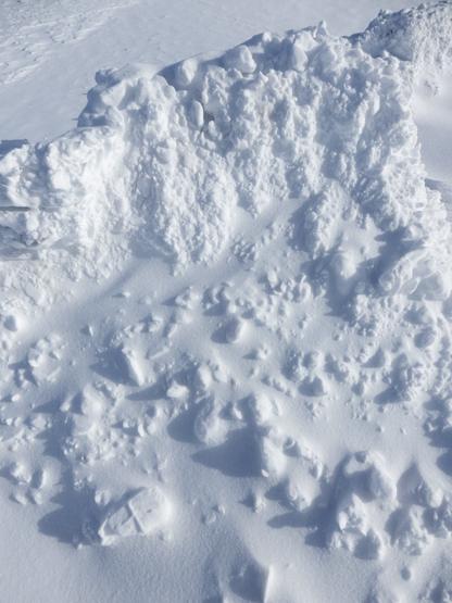 冬の造形_d0366590_11090669.jpg
