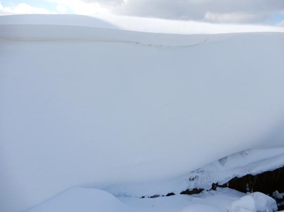 冬の造形_d0366590_11112145.jpg