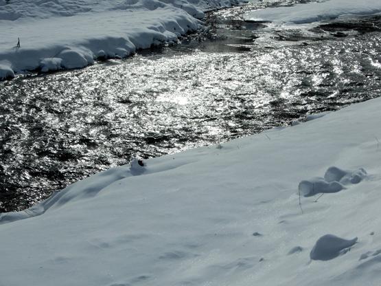 冬の造形_d0366590_11144760.jpg