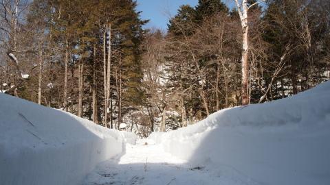極寒・暖気・雪_b0343293_21295787.jpg