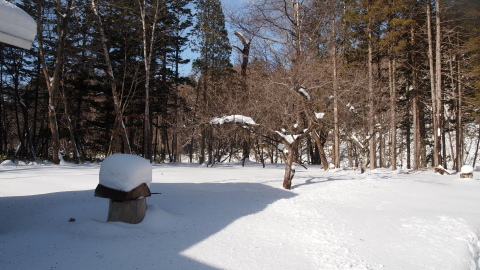 極寒・暖気・雪_b0343293_21551406.jpg