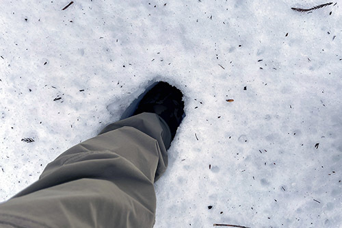 ジムニーで雪の積もった森へ行ってみた_c0148812_20400781.jpeg