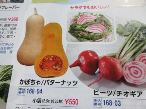 青森のリンゴ_c0223463_15172299.jpg