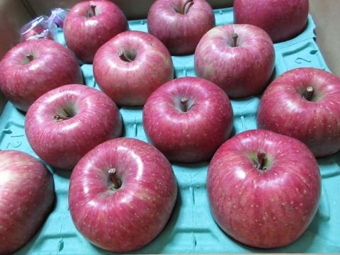 青森のリンゴ_c0223463_15174710.jpg