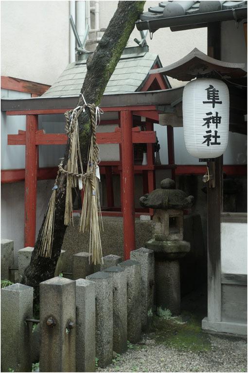 877 プレゼンテーション(2020年6月12日バルター50mmf2.3奈良町を落ち着いて見回し)日光、月光哀れ  _c0168172_11502798.jpg