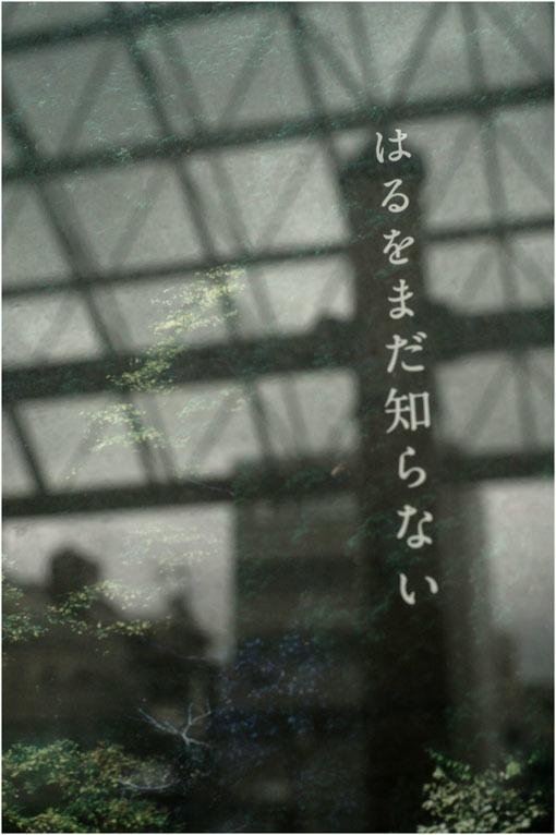 877 プレゼンテーション(2020年6月12日バルター50mmf2.3奈良町を落ち着いて見回し)日光、月光哀れ  _c0168172_11540533.jpg