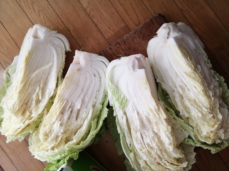大きな白菜と買い物_f0129585_17281925.jpg