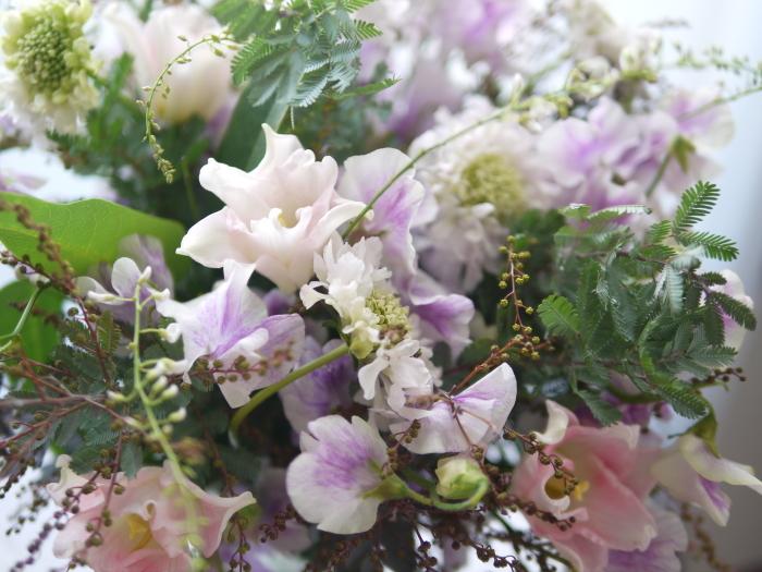 春の息吹をありがとうございます_a0169924_23282310.jpg