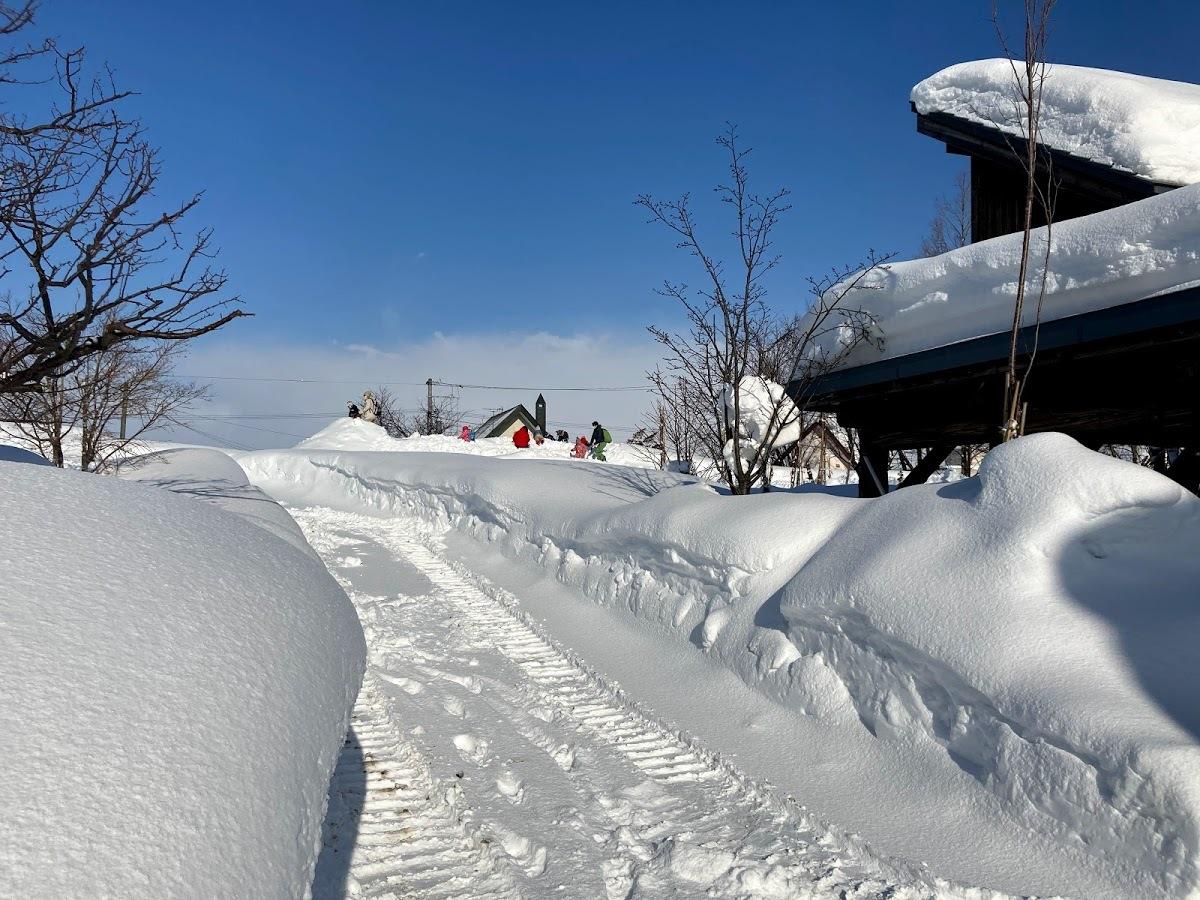 豪雪の中/あおぞら保育園_c0189970_09175682.jpg