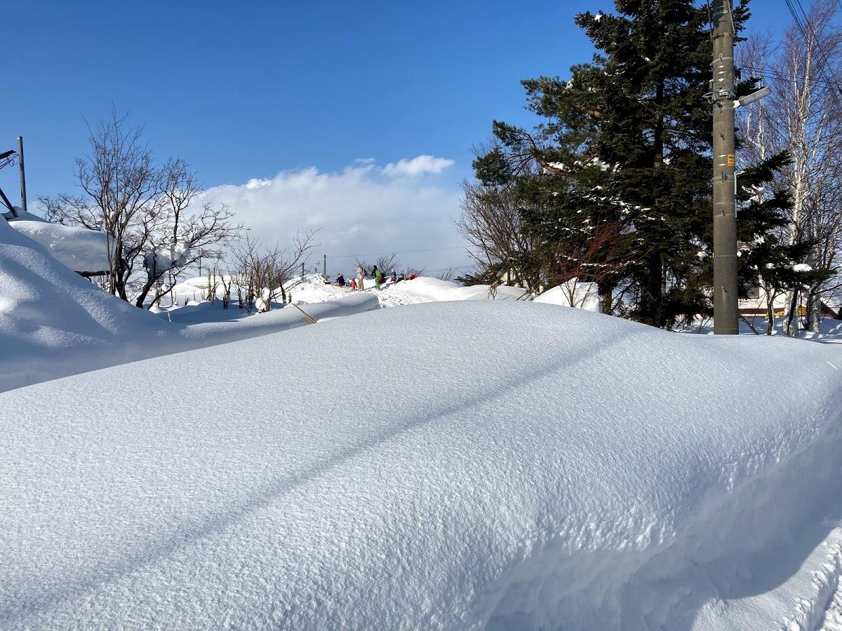 豪雪の中/あおぞら保育園_c0189970_09190514.jpg
