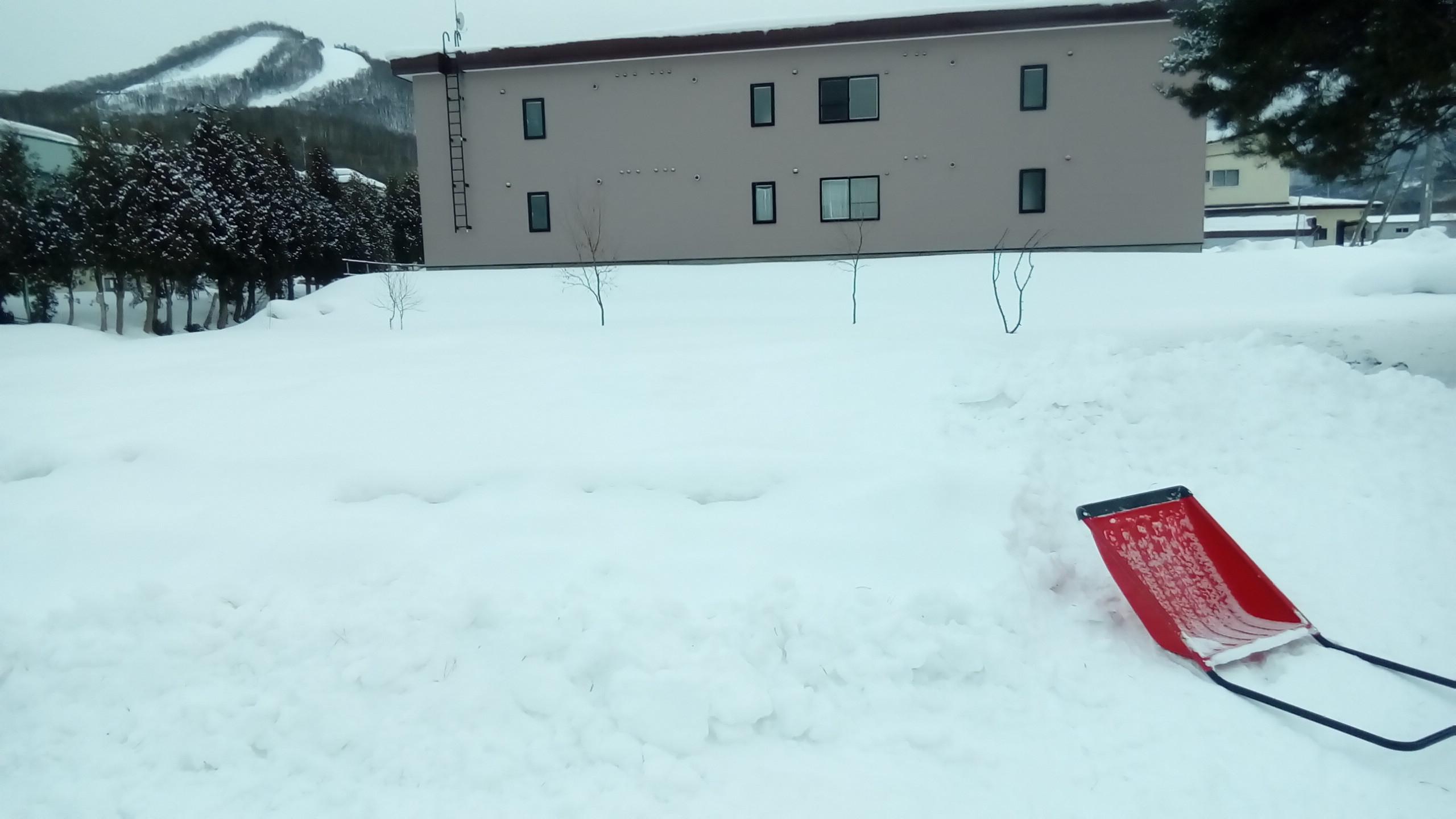 ガリガリ凍った雪のおしゃべり_c0220170_20572810.jpg