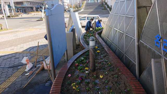 ガーデンふ頭総合案内所前花壇の植替えR3.1.18_d0338682_11092856.jpg