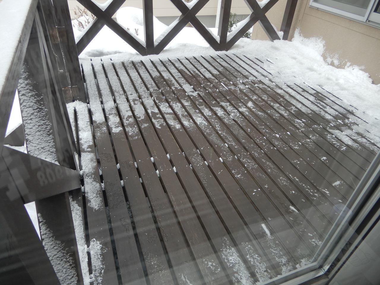 久しぶりの本格的降雪_c0025115_21142885.jpg