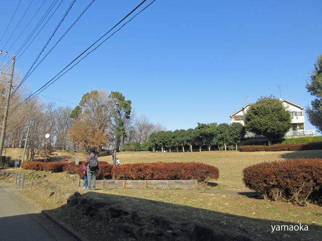 東京も雪になるかもしれない。。。_f0071480_17263351.jpg