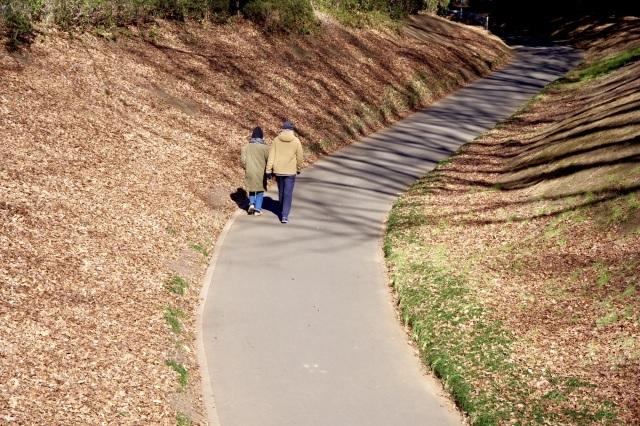 冬晴れの公園_b0191026_22263995.jpeg
