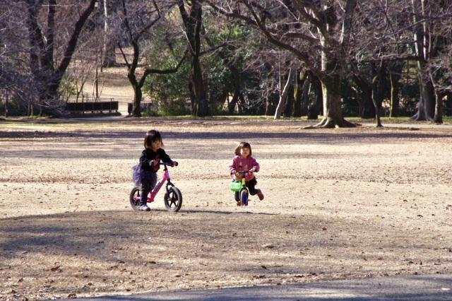 冬晴れの公園_b0191026_22265346.jpeg