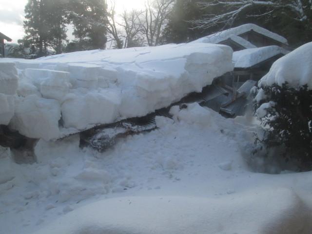大雪災害への支援をお願いします_糸魚川_d0348249_12553030.jpg