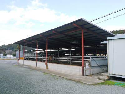 熊本県産の黒毛和牛100%のハンバーグステーキ!令和3年1月度の出荷をしました!2月度分予約受付中!_a0254656_16573640.jpg