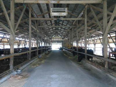 熊本県産の黒毛和牛100%のハンバーグステーキ!令和3年1月度の出荷をしました!2月度分予約受付中!_a0254656_17185049.jpg