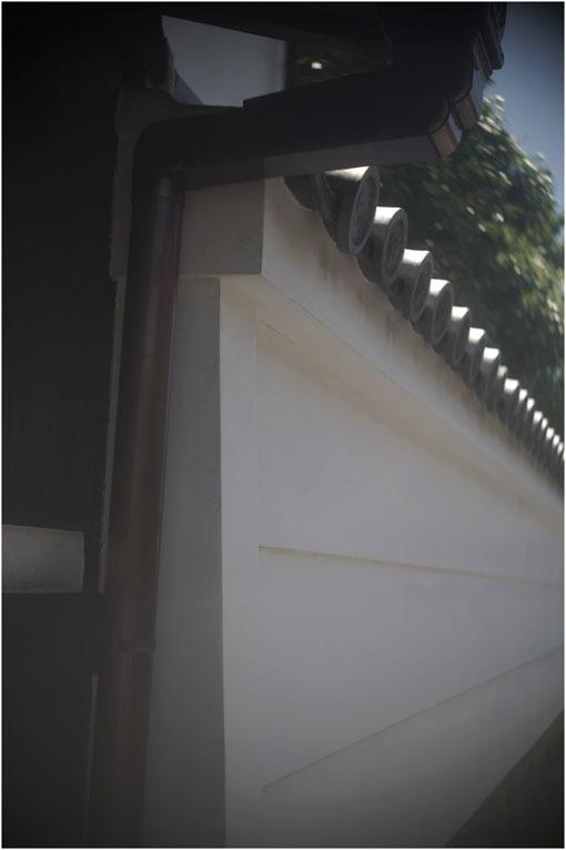 878 夢かうつつか(2020年6月7日パンタッカー50mmf2.3の奈良町ファンタジー)幻か?_c0168172_22083476.jpg