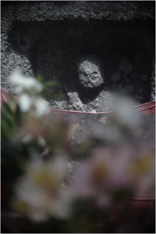 878 夢かうつつか(2020年6月7日パンタッカー50mmf2.3の奈良町ファンタジー)幻か?_c0168172_22100766.jpg