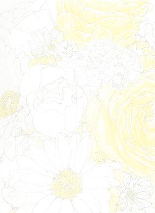 使った色鉛筆は、赤・青・黄・黒だけ_b0209395_11114634.jpg