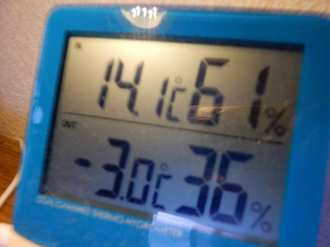 大寒の中の「春」_c0025115_21510762.jpg