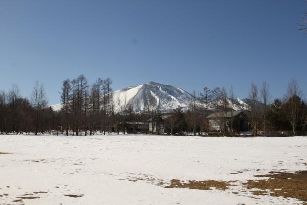 ハイジのフィールドだより「空も地もキラキラ」 - 北軽井沢スウィートグラス