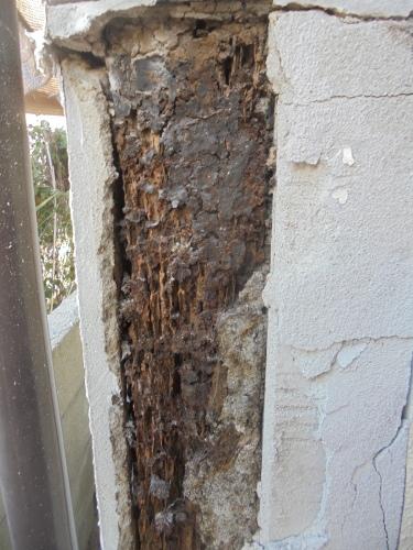 T様邸(佐伯区美の里)外壁塗装工事_d0125228_06421808.jpg