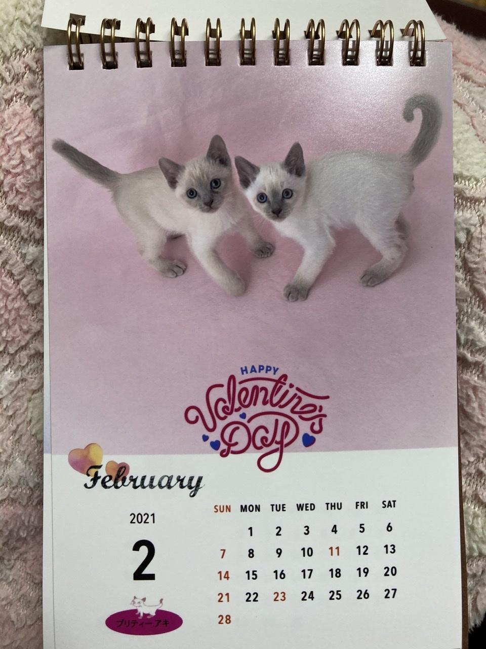 今年のカレンダー_a0090729_05331701.jpeg
