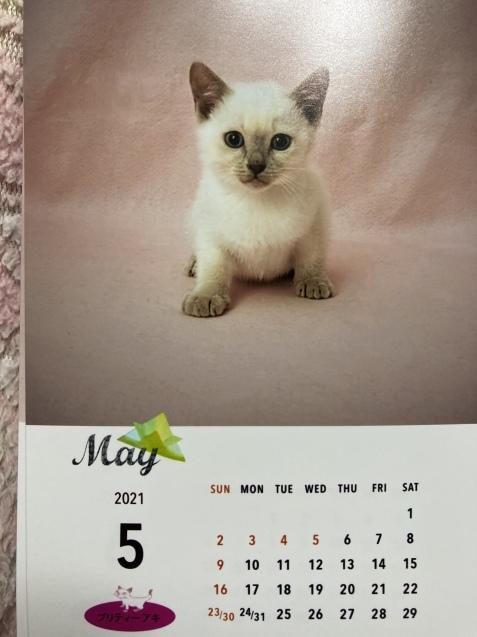 今年のカレンダー_a0090729_05353352.jpeg
