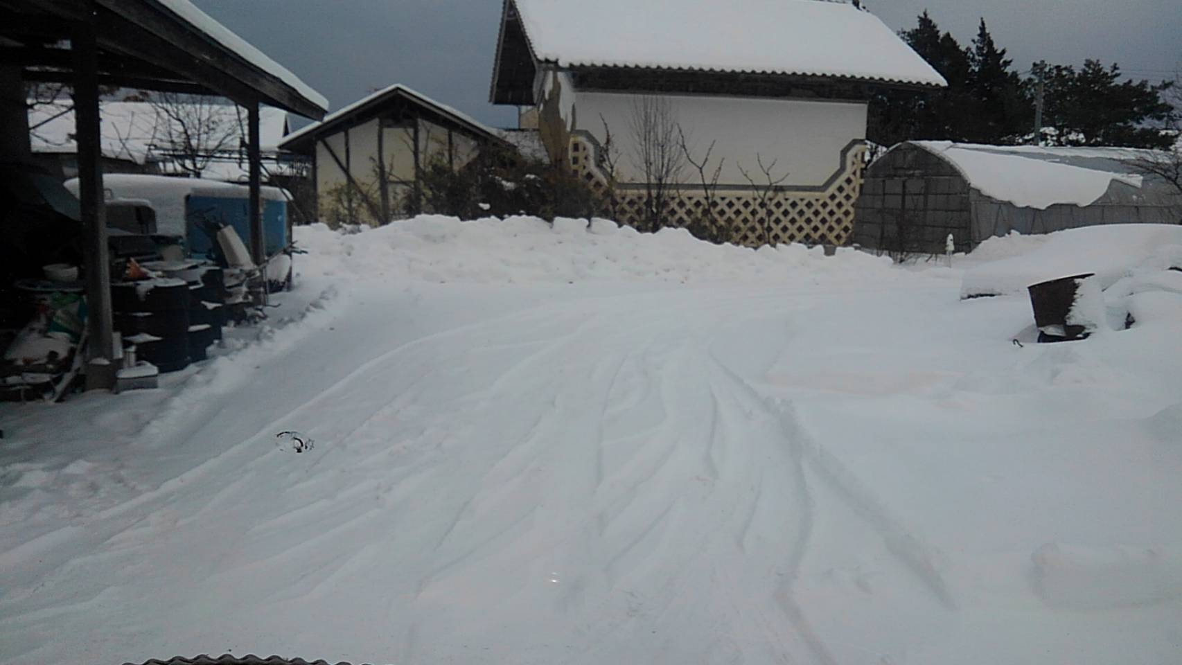 雪_c0154844_11342266.jpg