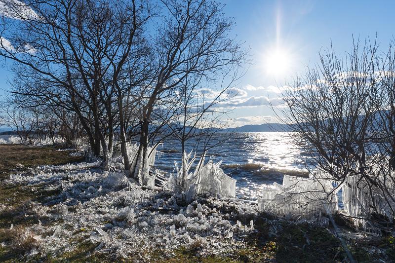 夕刻の飛沫氷(琵琶湖)_f0155048_22391242.jpg